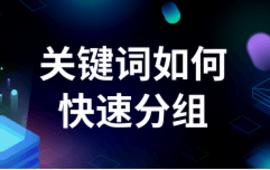 SEO优化站内优化●关键词如何快速分组 (30播放)