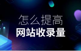SEO优化站内优化●怎么提高网站收录量 (141播放)