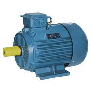 Y2-132M-4 7.5KW电机