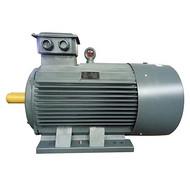 YE2 315L1-6-110高效率三相异步电动机