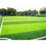 晋州创和别墅人造绿草坪防水(1.5cm20针)