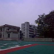 塑胶:球场拼装地板天津生产厂家欢迎您@