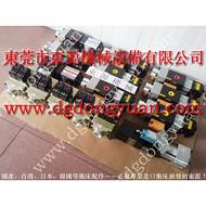 耐用的徐锻冲床滑块保护泵,PW1671-S-Z 300K