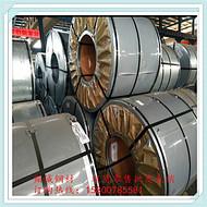 各种家电金属面板用SECCN5/SECCSL耐指纹电镀锌板卷
