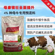 繁殖母牛吃什么饲料长的好 母牛产后瘫痪怎么办